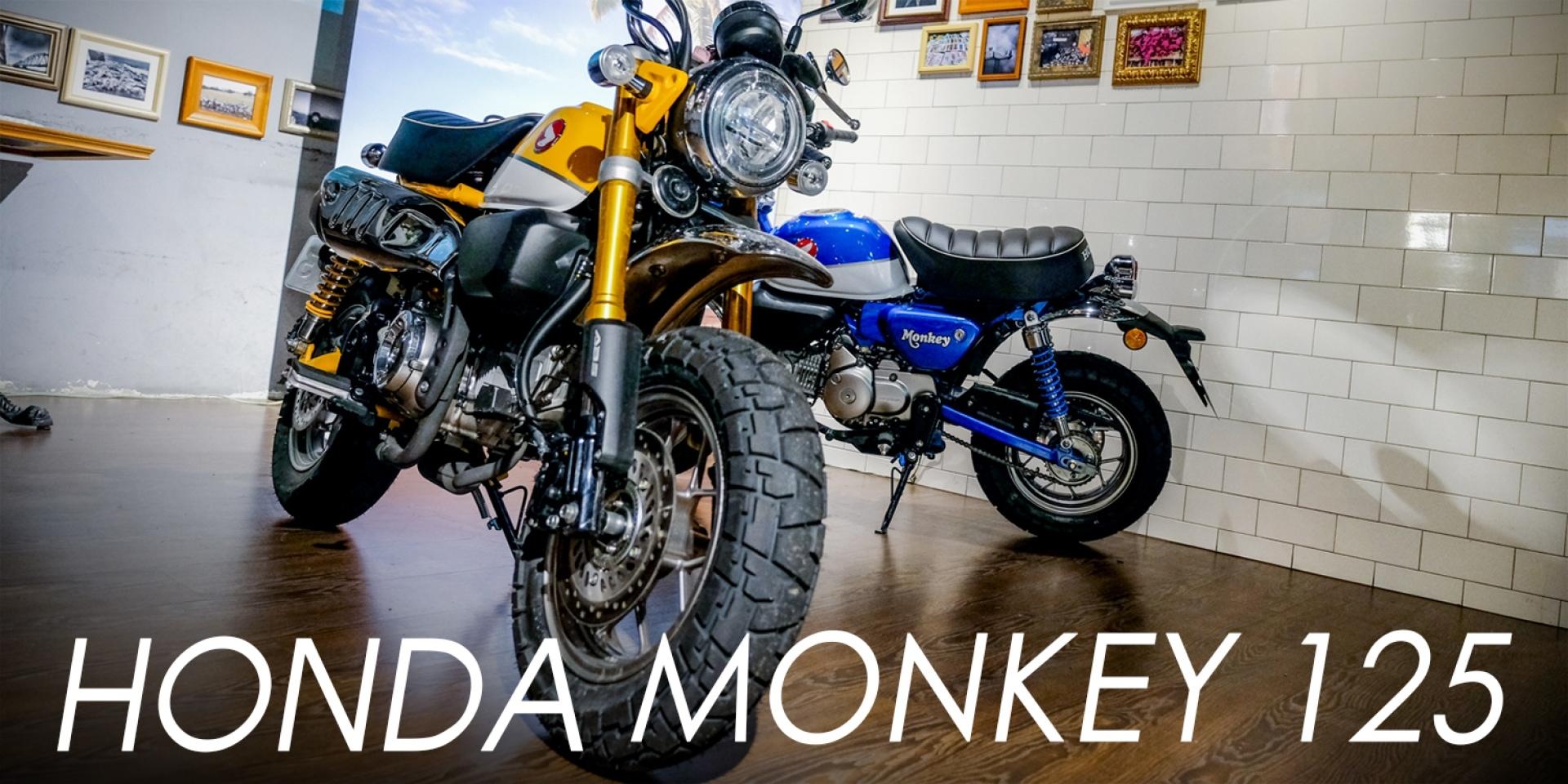 吸睛度破表!與眾不同可愛新焦點,HONDA MONKEY 125試駕體驗